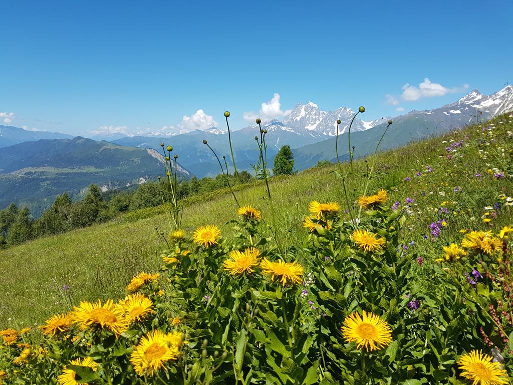 Berge von Svanetien