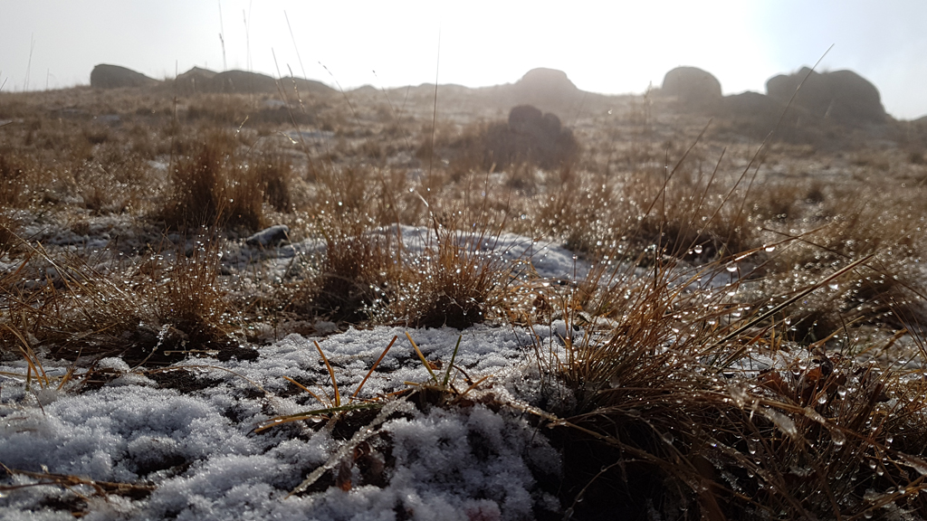 Schnee war auf der Wiese und auf den Bergen