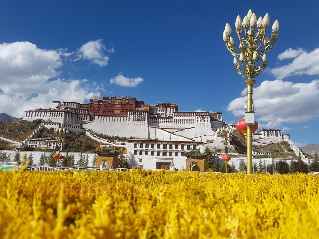 Der Potalla in Lhasa. Sitz des Dalai Lamas (Vor dessen Flucht)