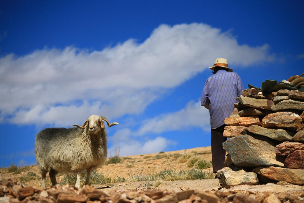 Szene aus dem Landleben