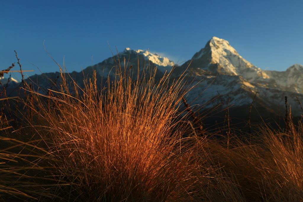Der Annapurna I (8091m)