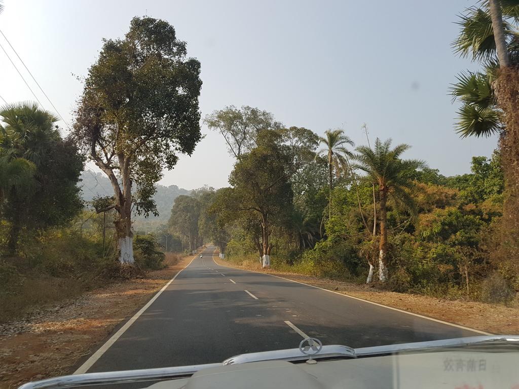 Der Weg zum Nationalpark. Es wird grüner :)