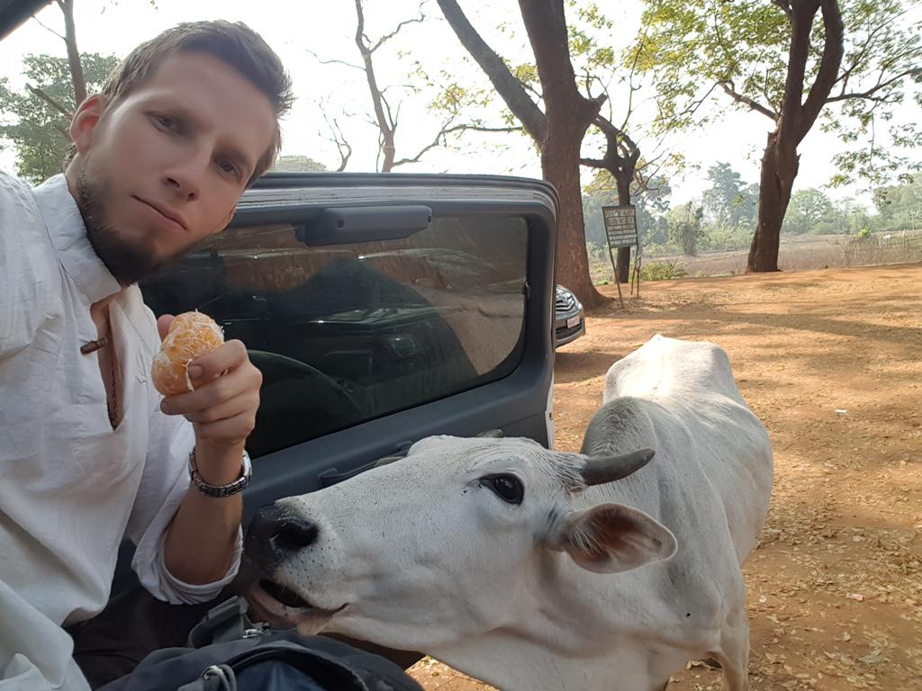 Die Kuh ließ mich einfach nicht essen!