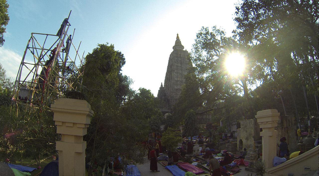 Der heilige Tempel und der Bodhibaum, wo Buddha seine Erleuchtung erlangte