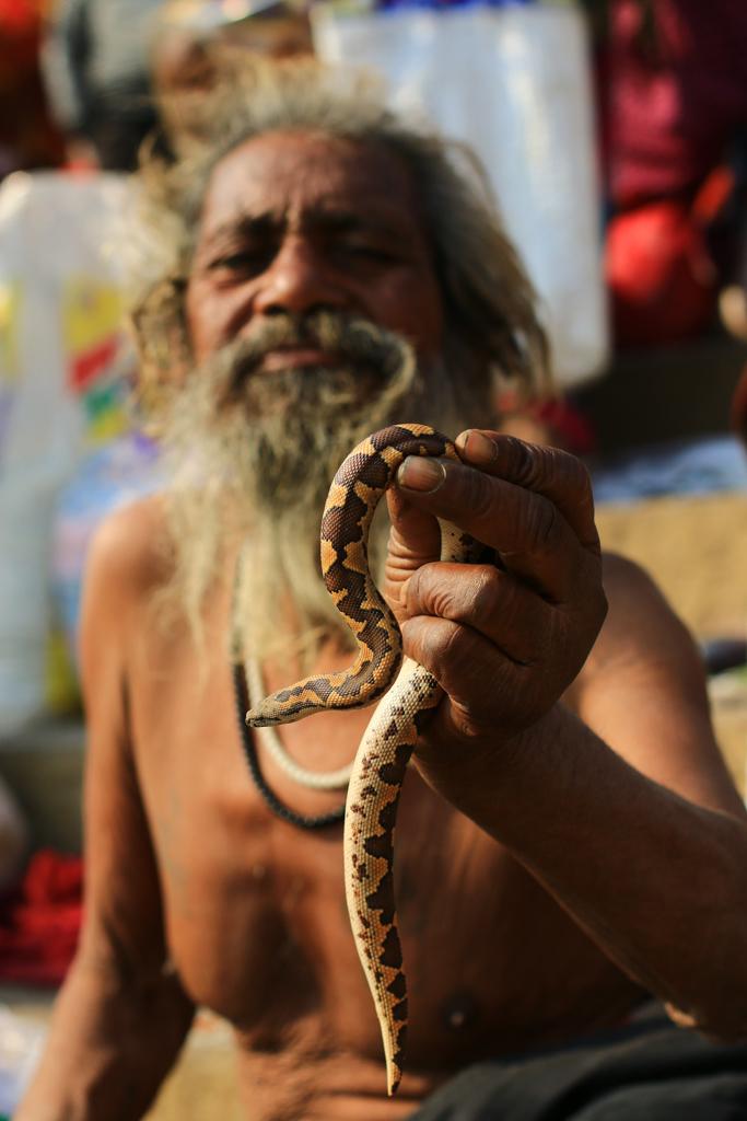 Dieser Sadhu steckt wenig später die Schlange in seinem Mund