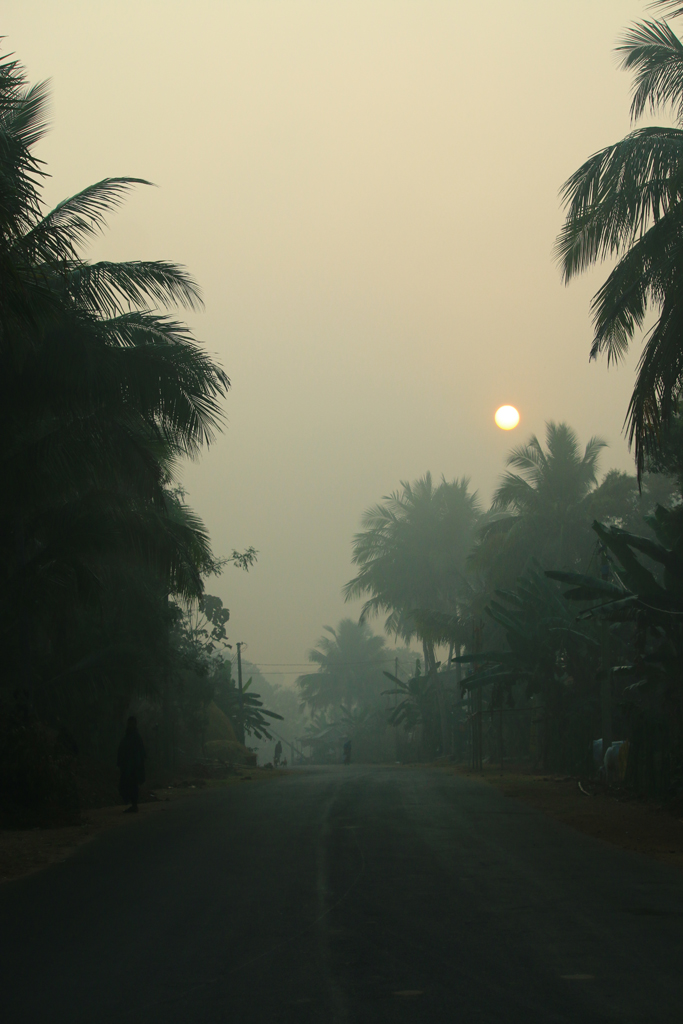 Im Morgengrauen liegen dichte Nebelschwaden über dem Land