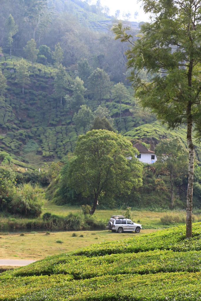 Mein schöner Stellplatz am Elefantenfluss