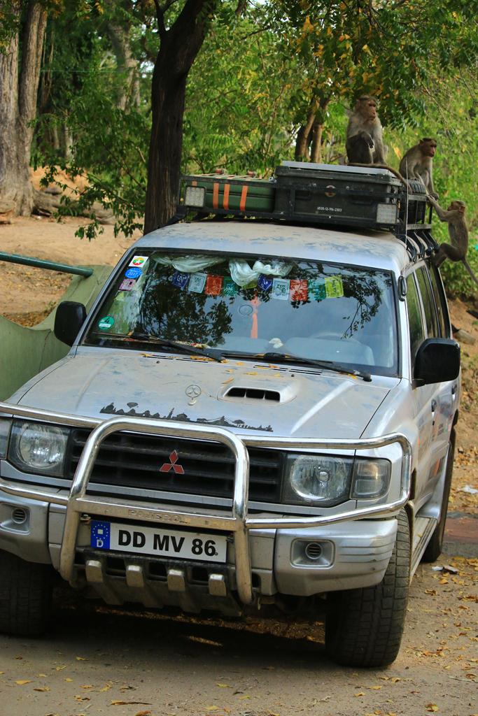 Nach der Tour durch den Nationalpark besetzten Affen mein Auto